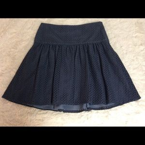 Ann Taylor Lace Lined Full Skirt Fitted Waistband